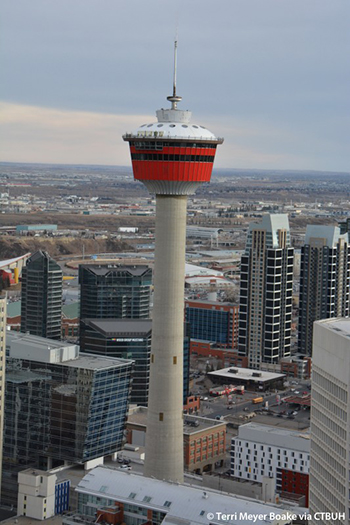300,000 people visit the 190-meter-tall tower each year.